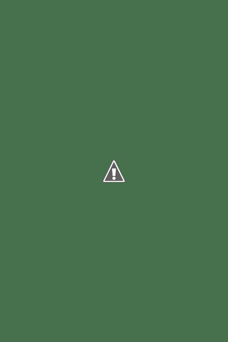 Senoia GA Walking Dead Tours of Woodbury.