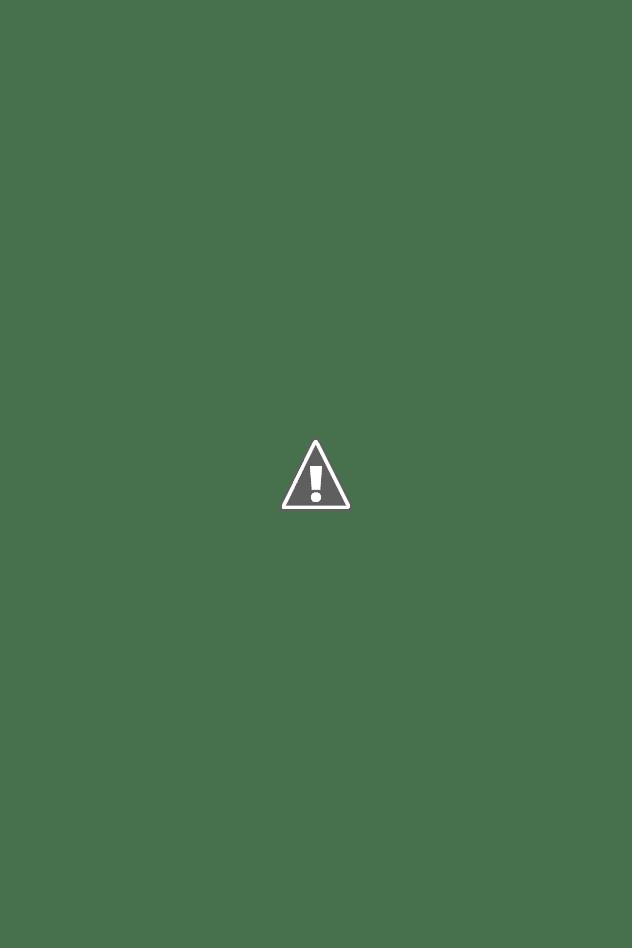Camos rusos (en imágenes) - Página 2 Finnish-winter-camo