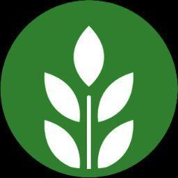 광수 김.