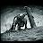 S Dan avatar image