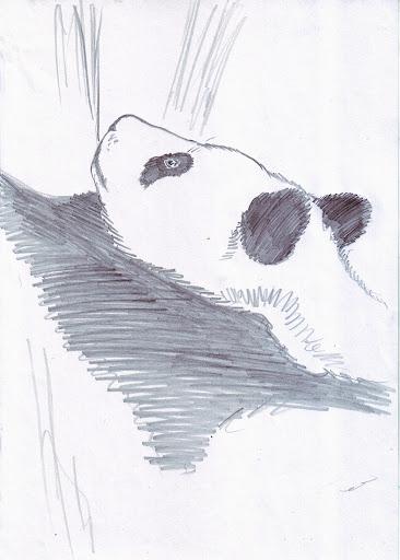 Осенняя Панда дня.