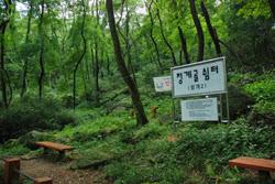 청계산 숲속여행