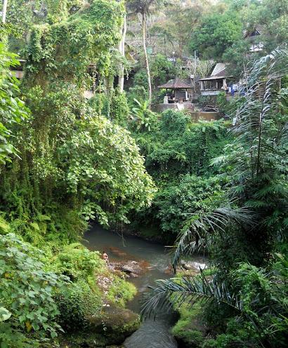 A természet összeér Ubud városával