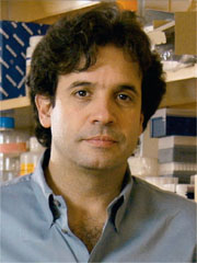 Alzheimer's Disease -- A Sudden Flash of Genius Rudy Tanzi