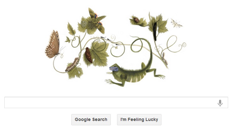 Google Doodle Celebrate Naturalist Maria's birthday