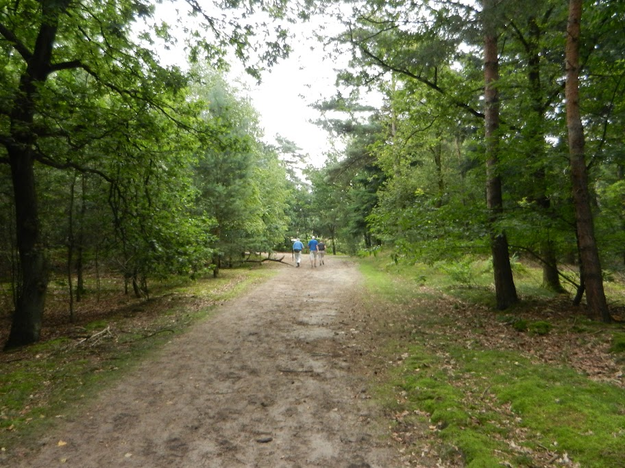 Kempenlandtocht (Geldrop, NL): 110km/80km: 2-3 août 2013 Geldrop%252C0304-08-12%2520138