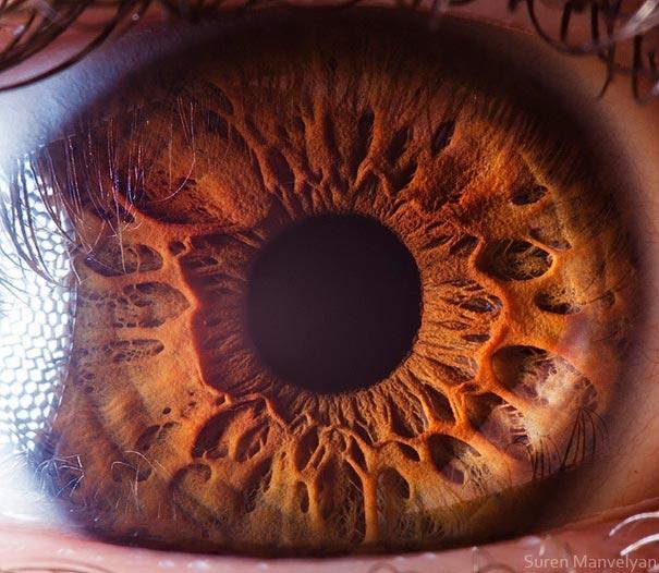 Breathtaking Close-Ups of the Human Eye | DeMilked
