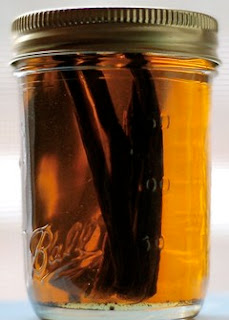 Vanilla beans in vodka and ball canning jar