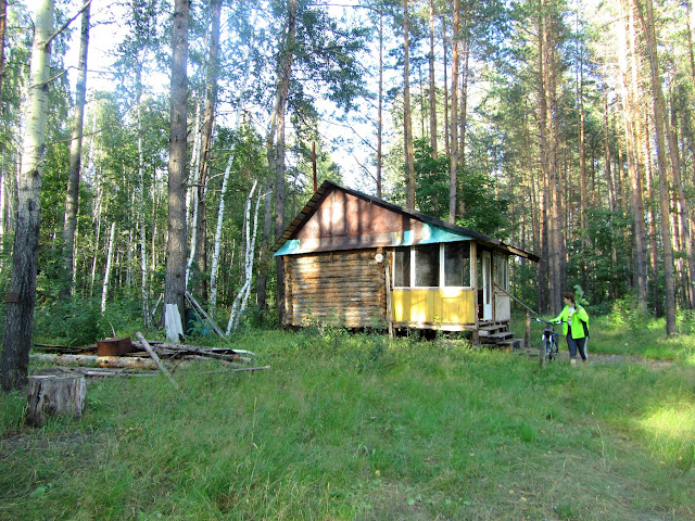 Домик в самой глуши леса