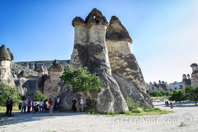 Kapadokya'daki Paşabağı vadisi ve peribacaları
