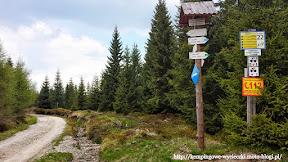 Na zdjęciu szlak zielony prowadzący m.in na Wysoką Kopę