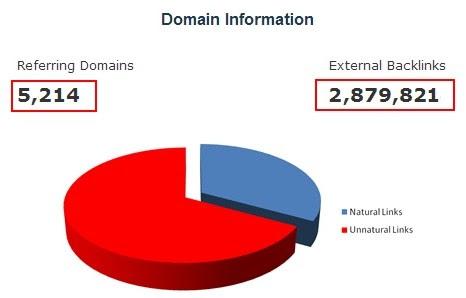 thông tin domain