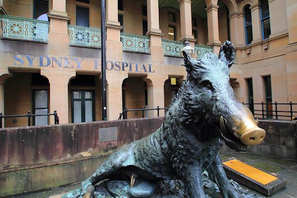 Sydney Hospital & Sydney Eye Hospital