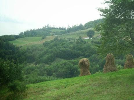 Сербское село в горах