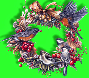 BIRDWREATH.jpg