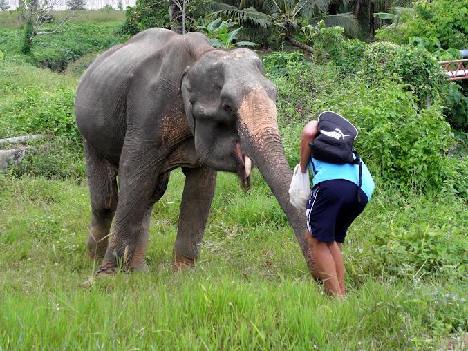 https://lh5.googleusercontent.com/-xkRPr0yzd8Y/Up0XgSzMCKI/AAAAAAAAEzE/y_OyaPr2MIM/w677-h508-no/Tajlandia+2013+952.JPG