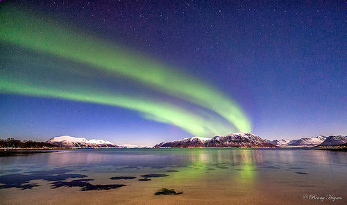 Aurora stretching over the horizon.Jan 17. 2014  at Stamnes beach, Sortland, Norway