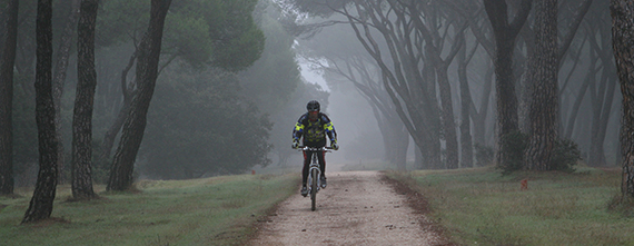 Mapa de la Casa de Campo y del Anillo Verde Ciclista. Tercera edición