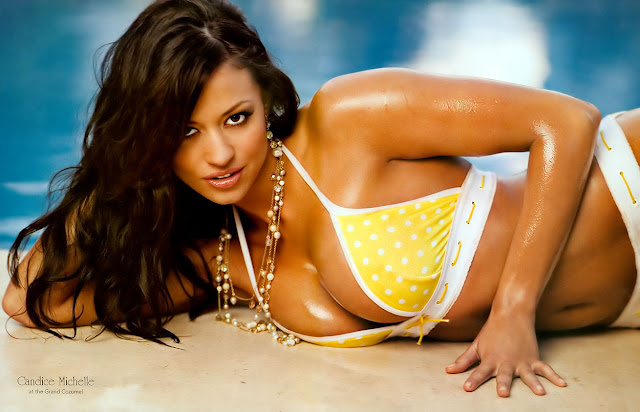 wwe divas wallpapers undressed. She posed nude for Playboy and