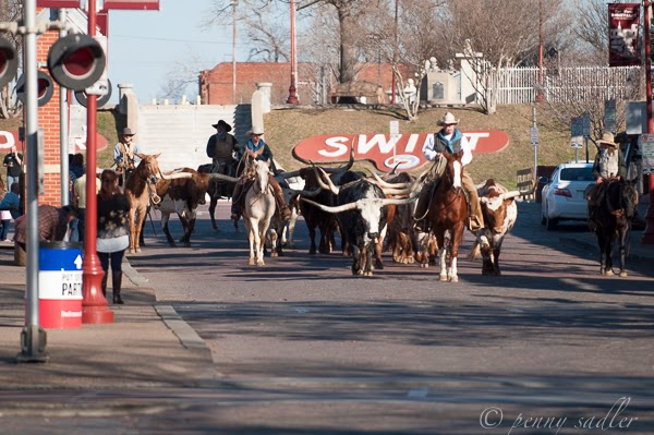 Ft Worth Stockyards Parade