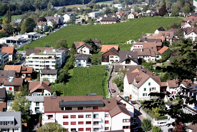 Vineyards in Vaduz, Liechtenstein