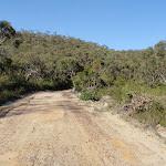 Thommos Loop trail (196751)