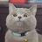 sofia sneazhkova avatar image