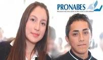 Solicitud PRONABES 2012 2013 Becas