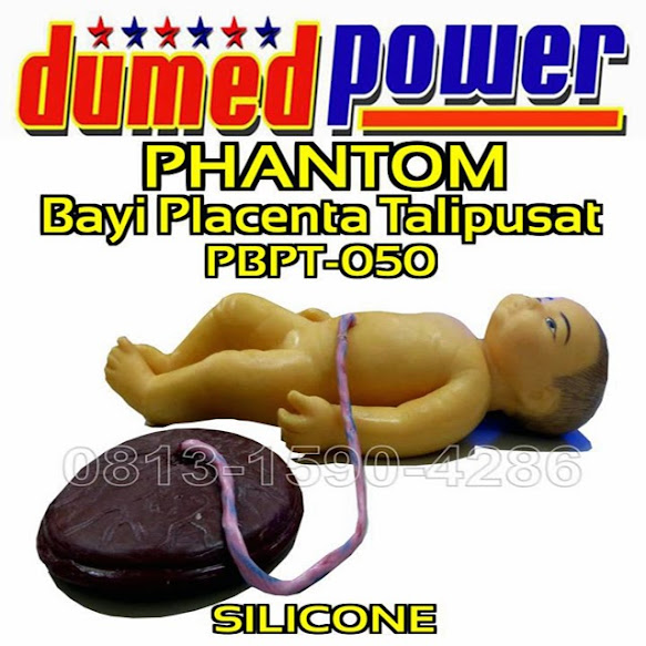 Phantom-Baby-Placenta-And-Umbilical-Cord