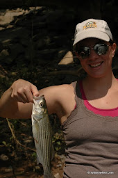 first striper on fly
