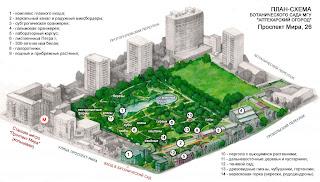 План-схема Ботанического сада МГУ (Аптекарский огород)