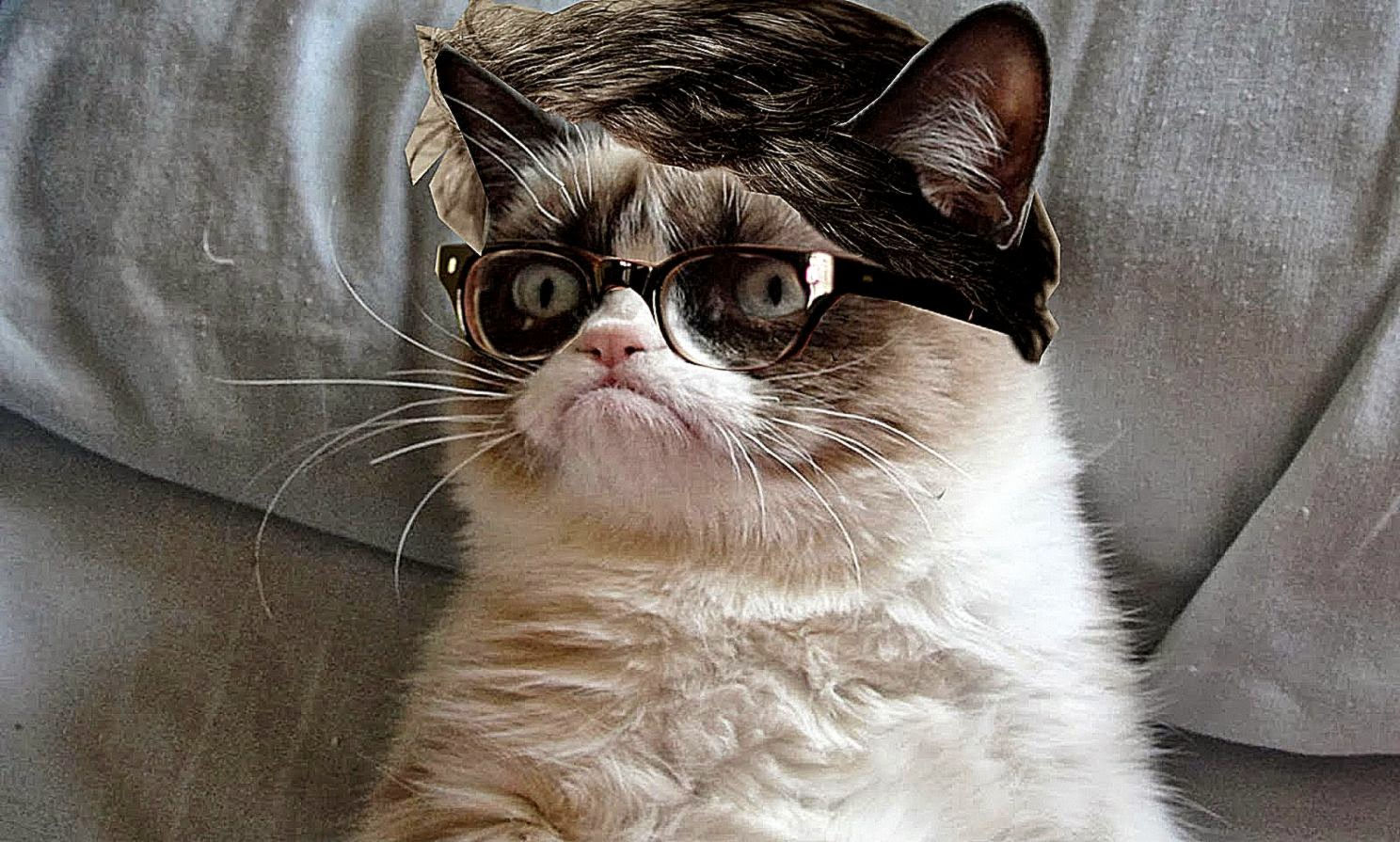 angry cat birthday hat images