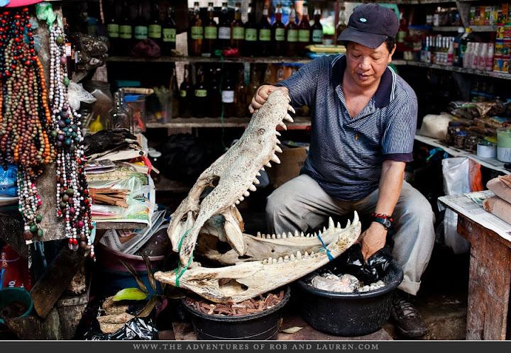 Questões e Fatos sobre Crocodilianos gigantes: Transferência de debate da comunidade Conflitos Selvagens.  - Página 3 Large_belen-market-11