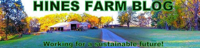 Hines Farm Blog