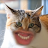 Judah Burch avatar image
