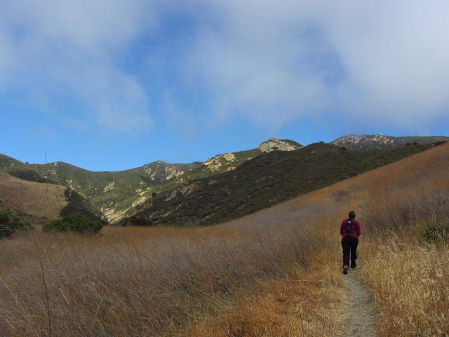 a bit of trail up through the grassy hillside