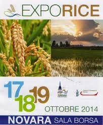 Expo Rice 2014 fino al 19 Ottobre Novara
