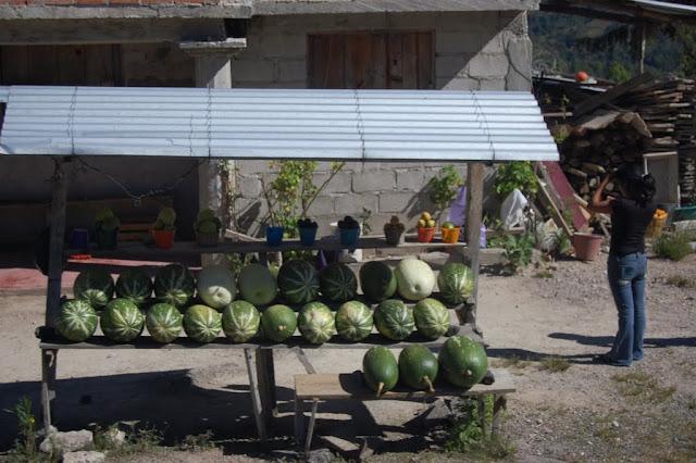 Viva Mexico DSC_0759