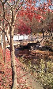 광교산(도이치고개)