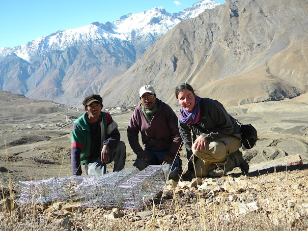 setting traps with two field assistants, Kibber in background