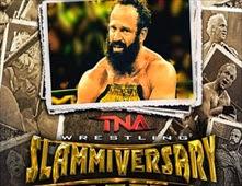 TNA Slammiversary 2014