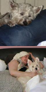 Me & my westies : Kiya & Jessa!