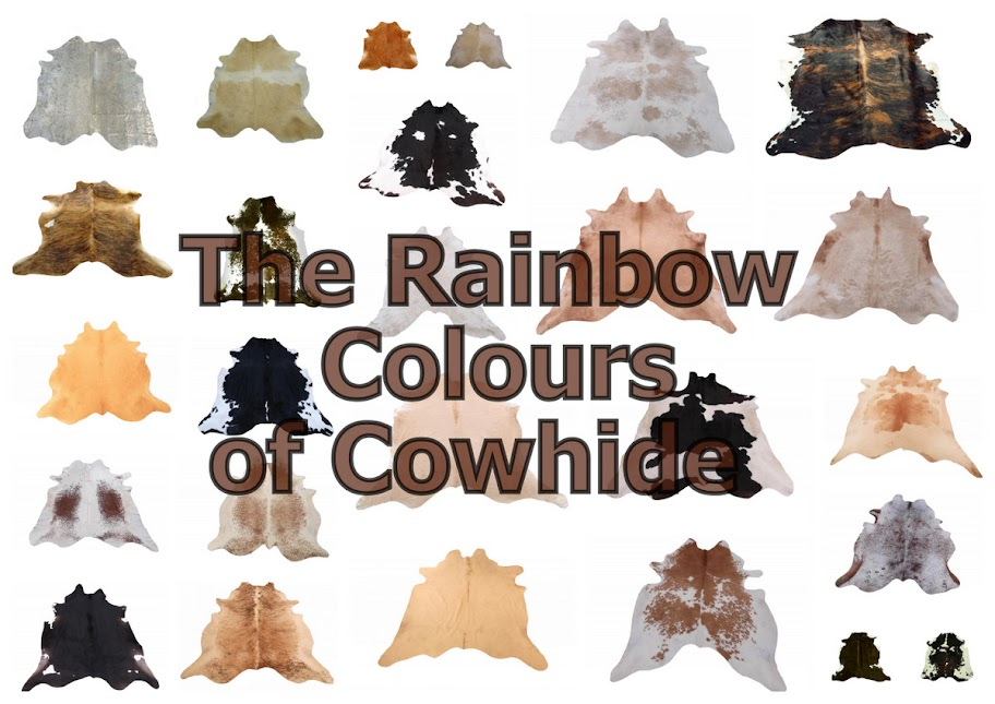 The Rainbow Colours of Cowhide