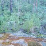 Lincoln Creek (144039)