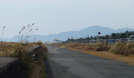 久能海岸の道