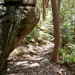 Track around boulder (20429)