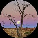 zayid altamimi