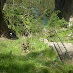 Steps down below Carlotta's Arch (8483)