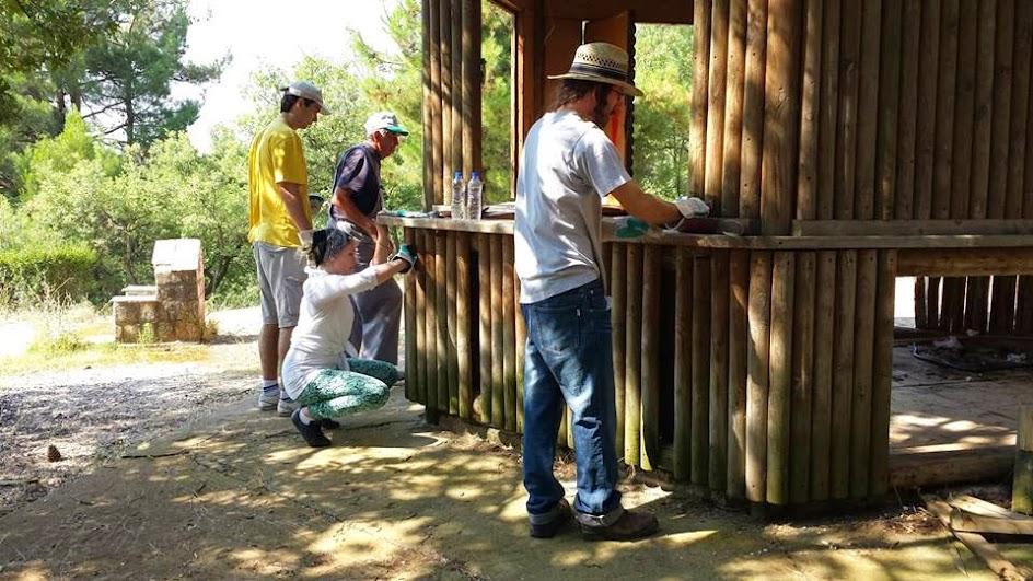 Ξεκίνησε η ανάπλαση του δάσους της Τσίγγλας από τους εθελοντές