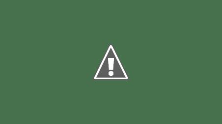 Brutarul Europei Adrian Nastase PSD Mandri ca suntem romani Mândri că suntem români